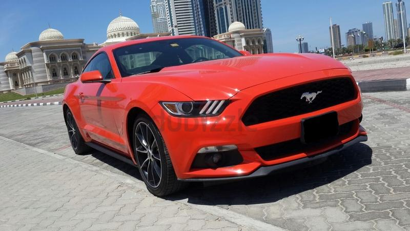 dubizzle dubai mustang mustang 4 cylinder turbo echo. Black Bedroom Furniture Sets. Home Design Ideas
