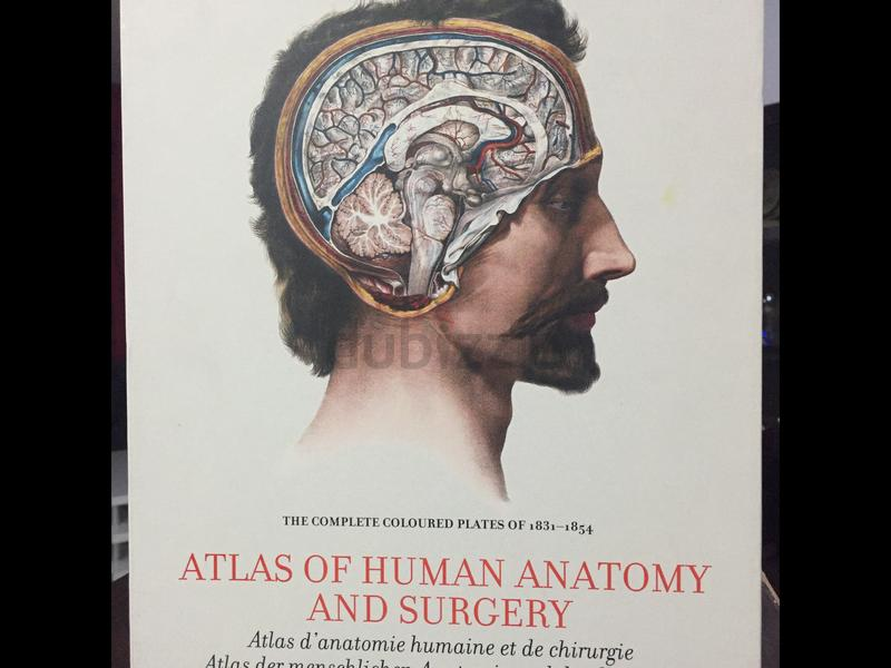 Dubizzle Dubai Misc Atlas Of Human Anatomy And Surgery