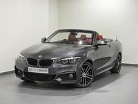 BMW 2-Series 2018 BMW 230i Convertible M Sport Package